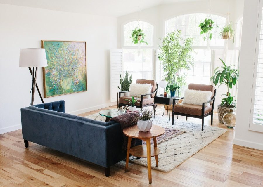 6 Unexpected Ways to Decorate your Home with House Plants